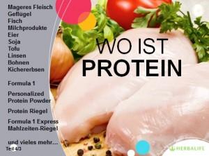 Teil 4_3_Protein_Globale Ernährungsphilosophie