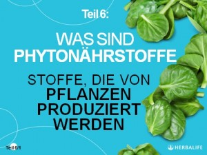 Teil 6_1_Phytonährstoffe_Globale Ernährungsphilosophie