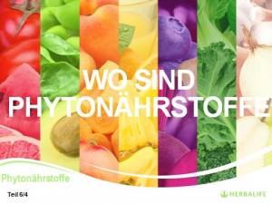Teil 6_4_Phytonährstoffe_Globale Ernährungsphilosophie